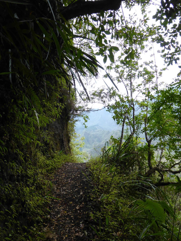 Reunion-Maurice : carnet de voyage