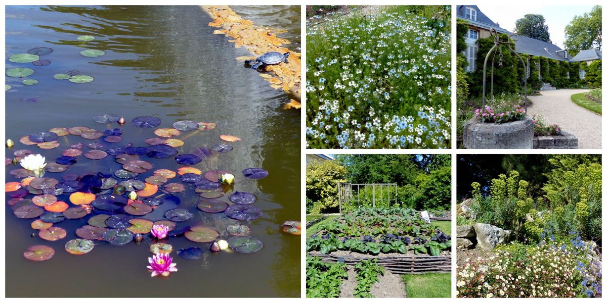 Jardin des plantes bassins et fleurs