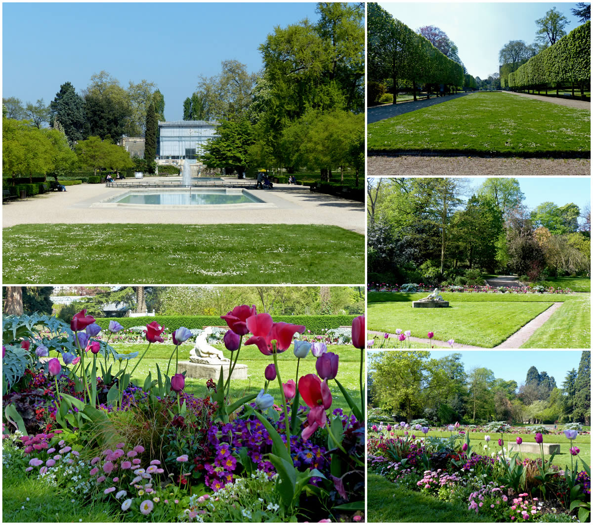 Jardin_des_Plantes_promenade_F1