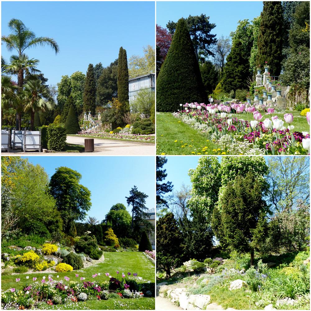 Le Jardin des Plantes de Rouen dans tous ses états